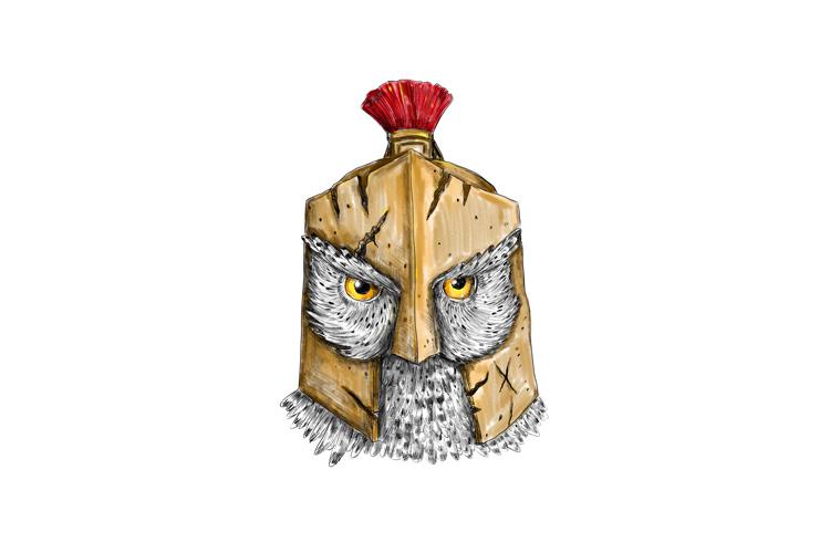 Owl Wearing Spartan Helmet Tattoo example image 1