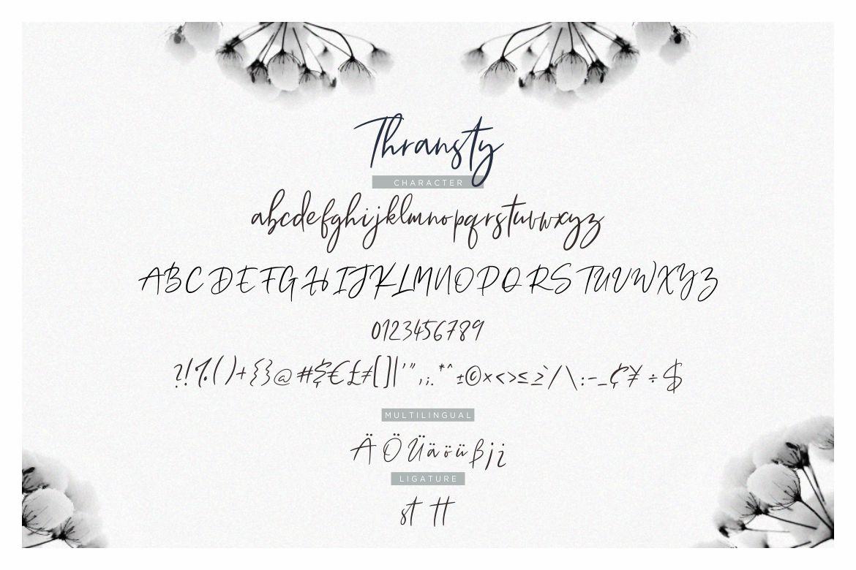 Thransty Handwritten Script example image 7