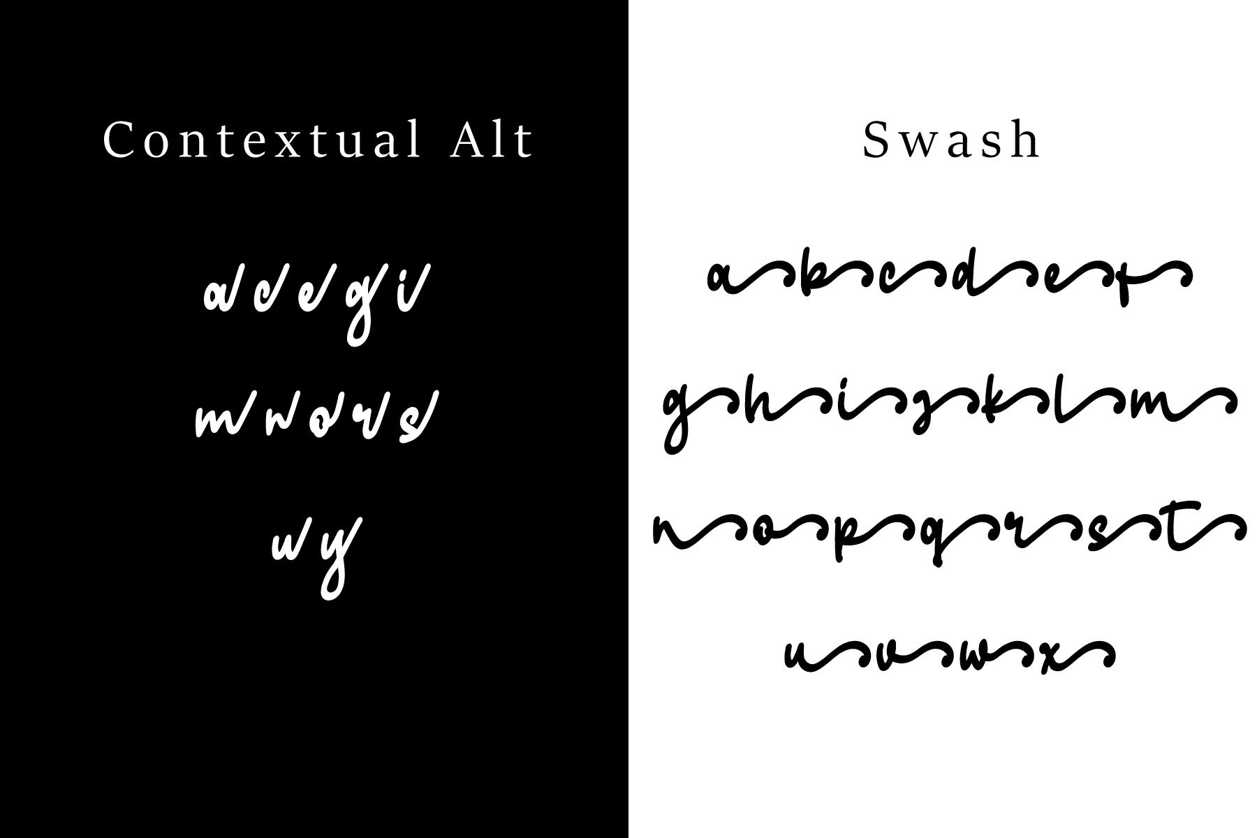 Skilled | Elegant Fonts example image 12