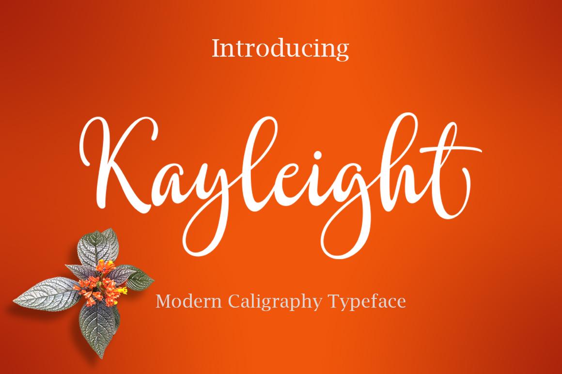 The Script Font Bundle example image 14