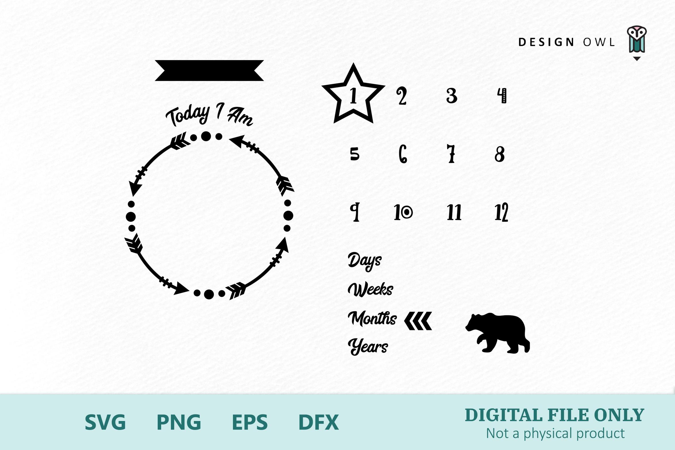 Bear Milestone Blanket - SVG cut file example image 2