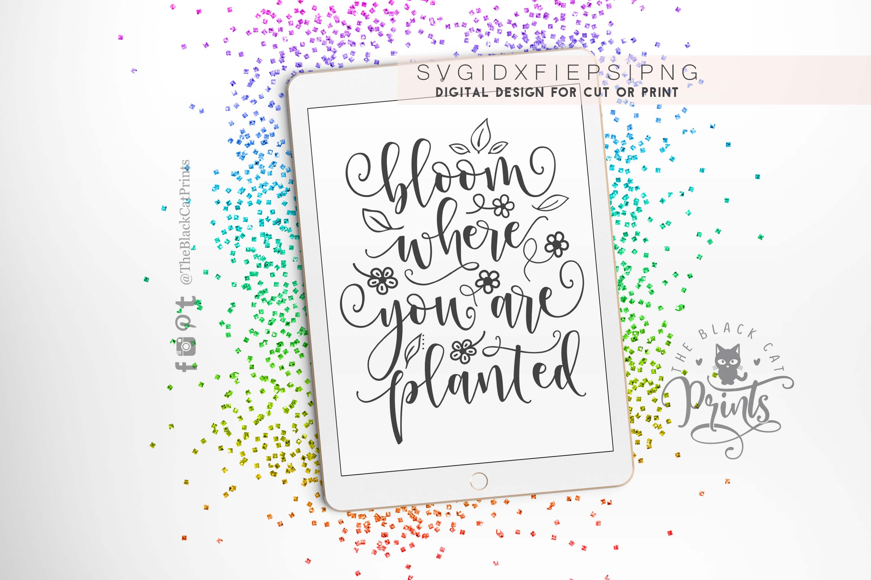 Bloom where you are planted SVG DXF PNG EPS example image 4