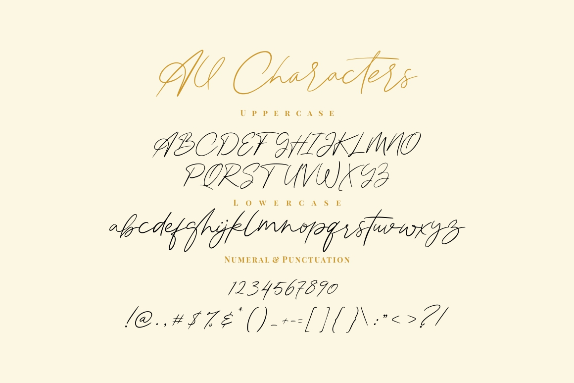 Attaira - Display And Signature Font example image 9