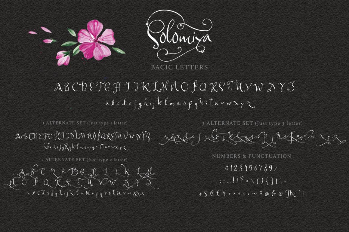 Solomiya.Tribal script font. example image 12