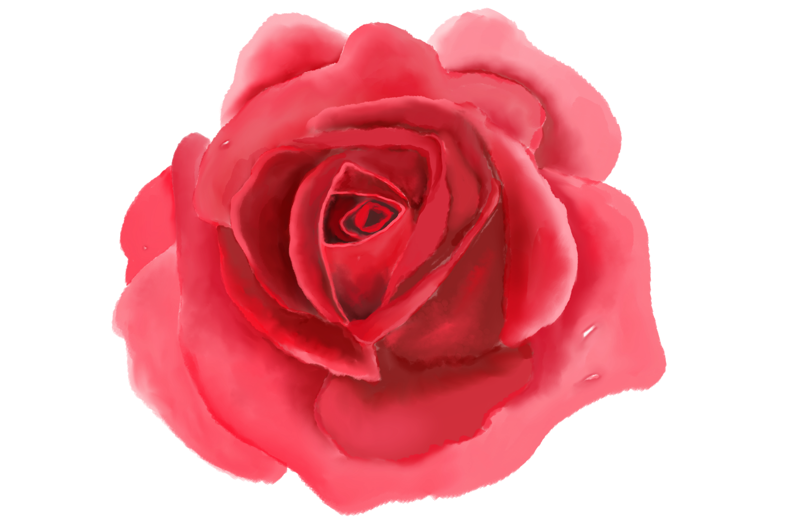 6 Digital Watercolor Roses | Clip Art Illustrations PNG/JPEG example image 6