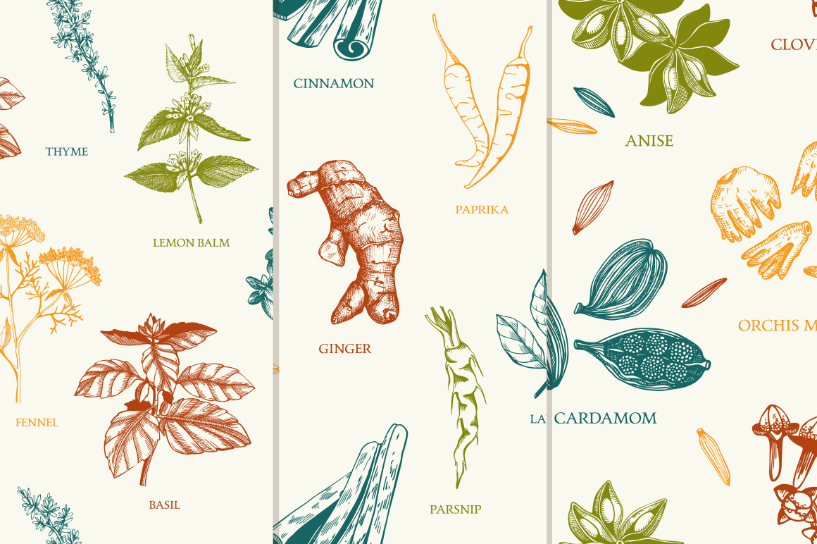 Ink Hand Drawn Spice Collection example image 10