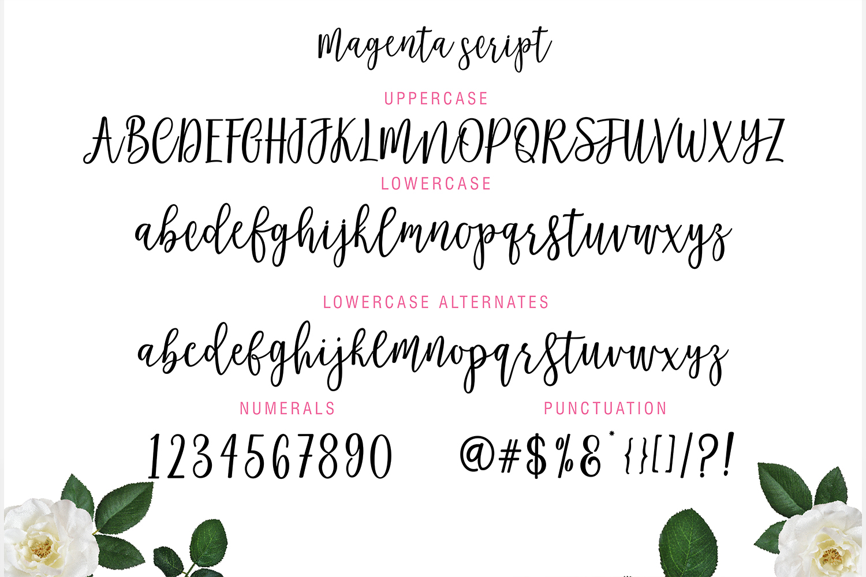 Magenta Script example image 10