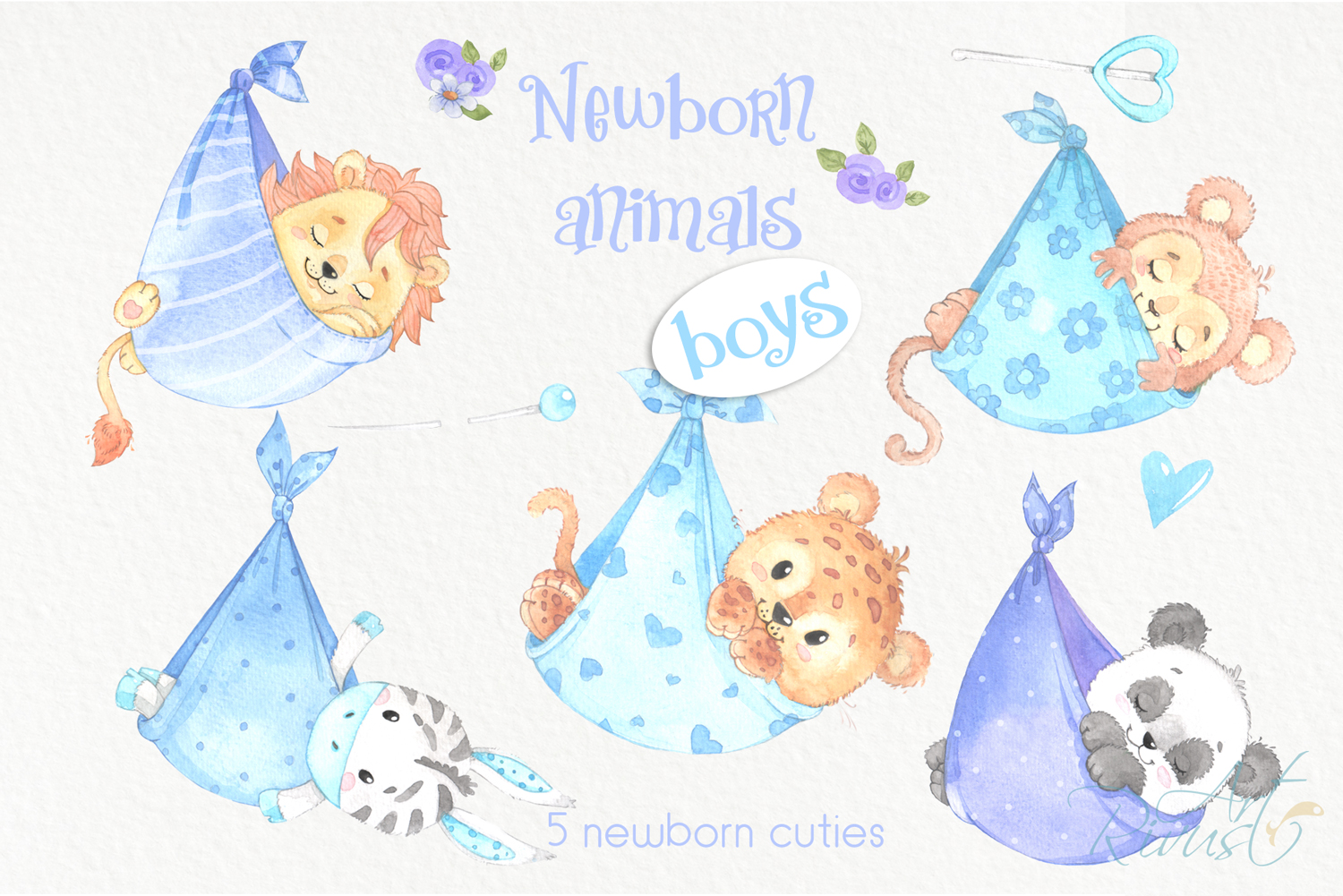 It's a boy Newborn animals clipart PNG download. African Saf example image 2