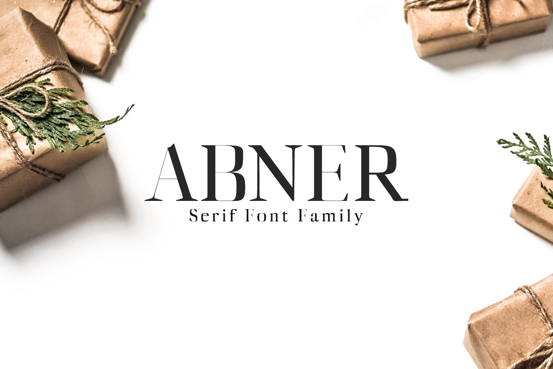Abner Serif 6 Font Family example image 1