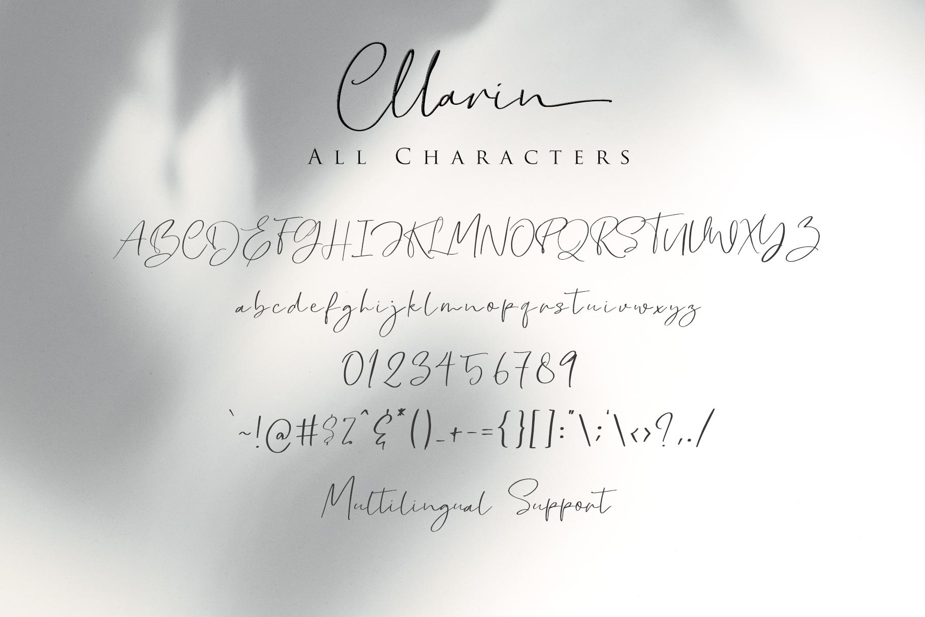 Cllarin - Modern Script Font example image 9