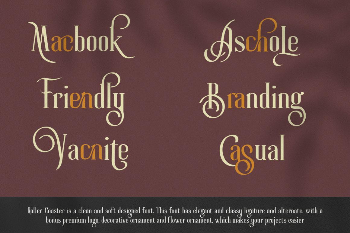 Roller Coaster Elegant Serif Extra example image 8