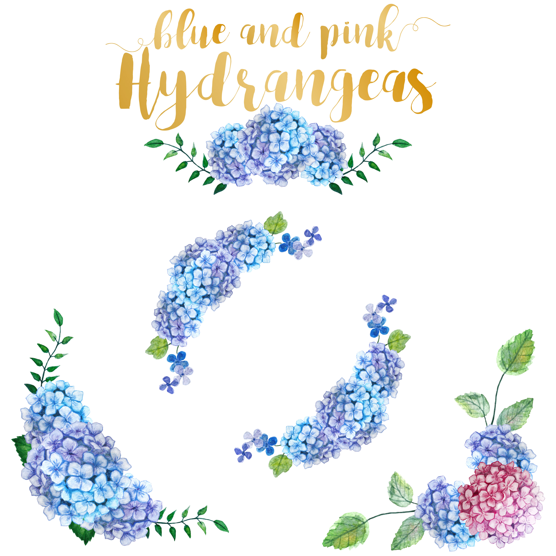Watercolor Hydrangea Clipart example image 3