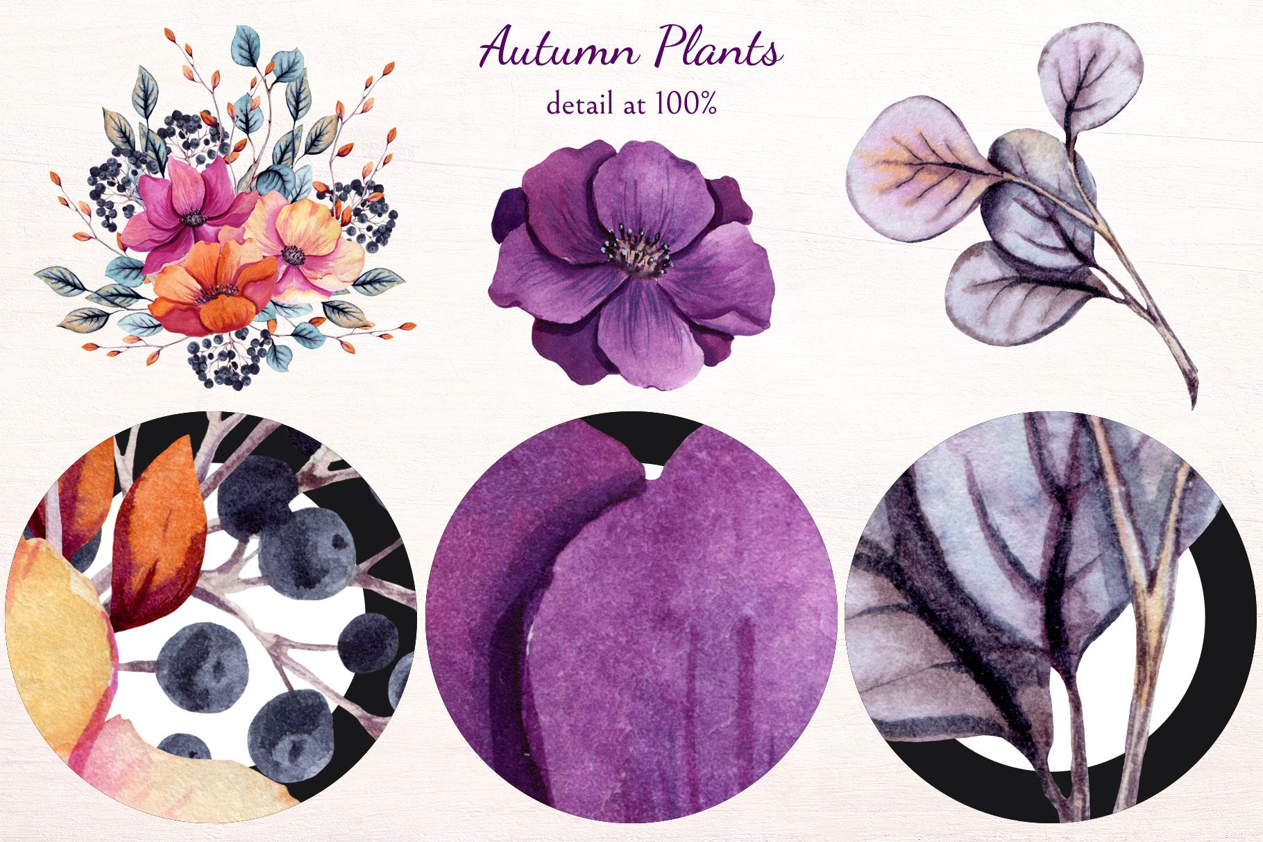 Autumn Plants example image 10