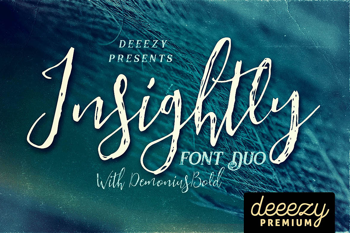 Insightly Font Duo example image 1