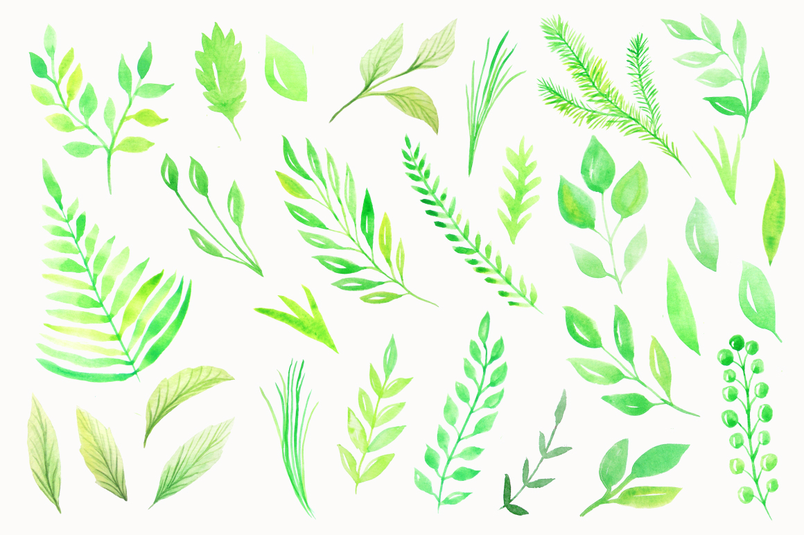 Watercolor Green Elements Pack example image 3
