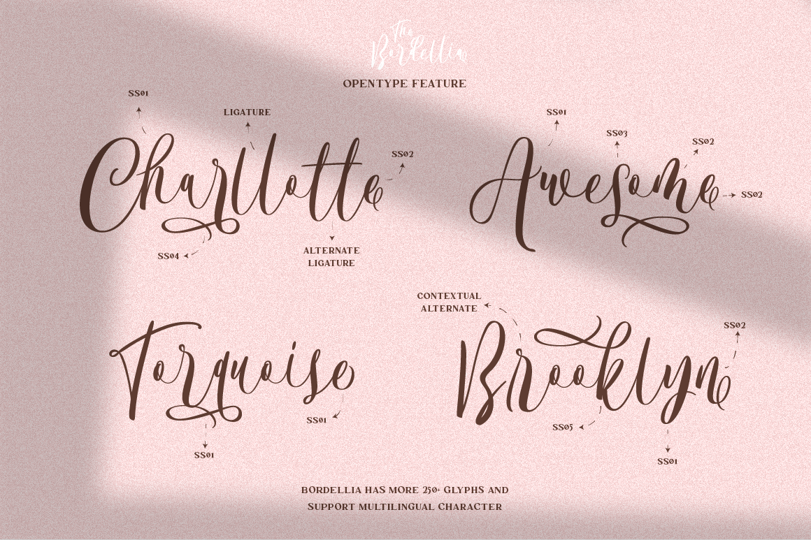 The Bordellia Font Duo example image 7