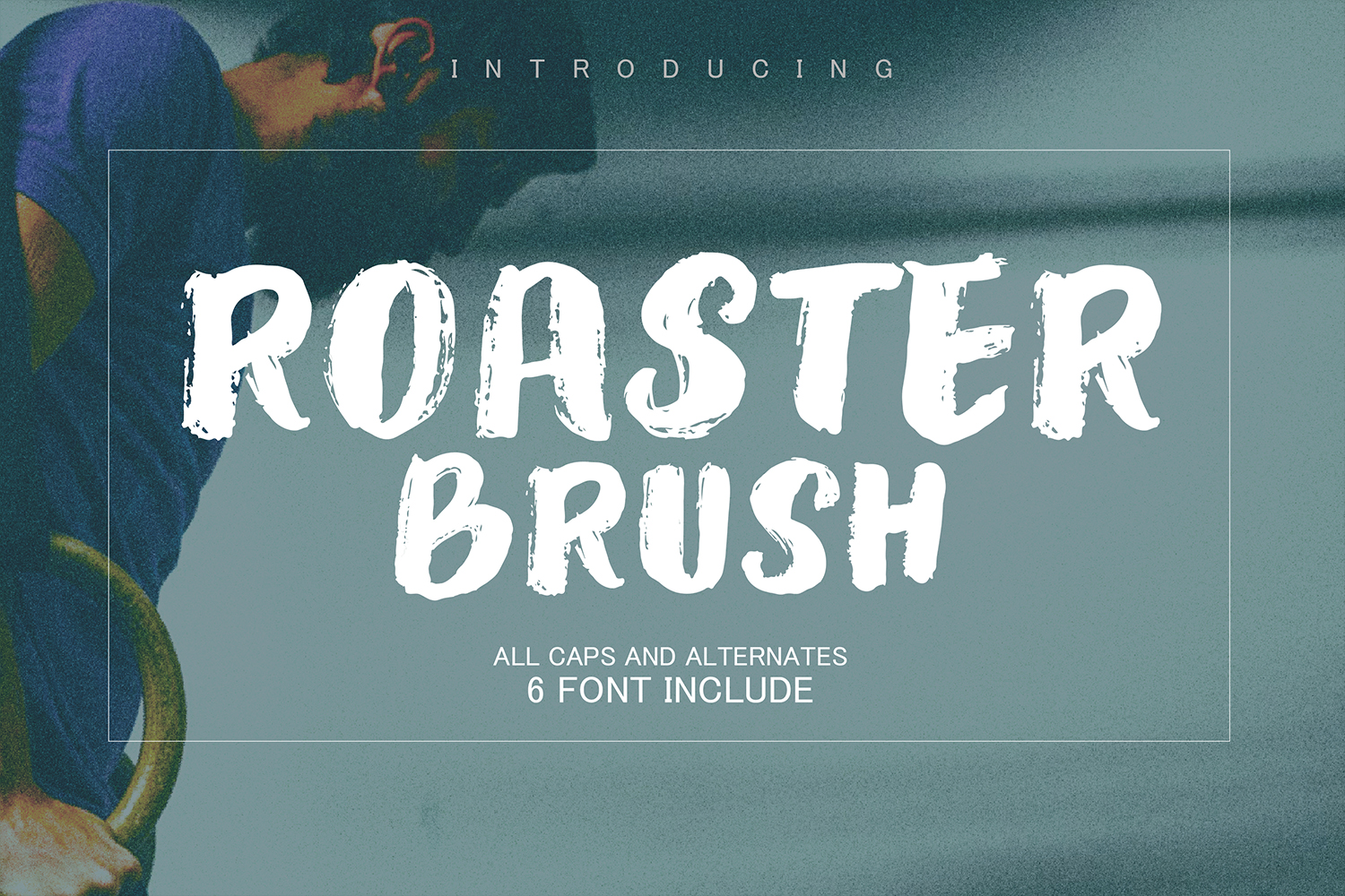 Roaster Brush Collection example image 1