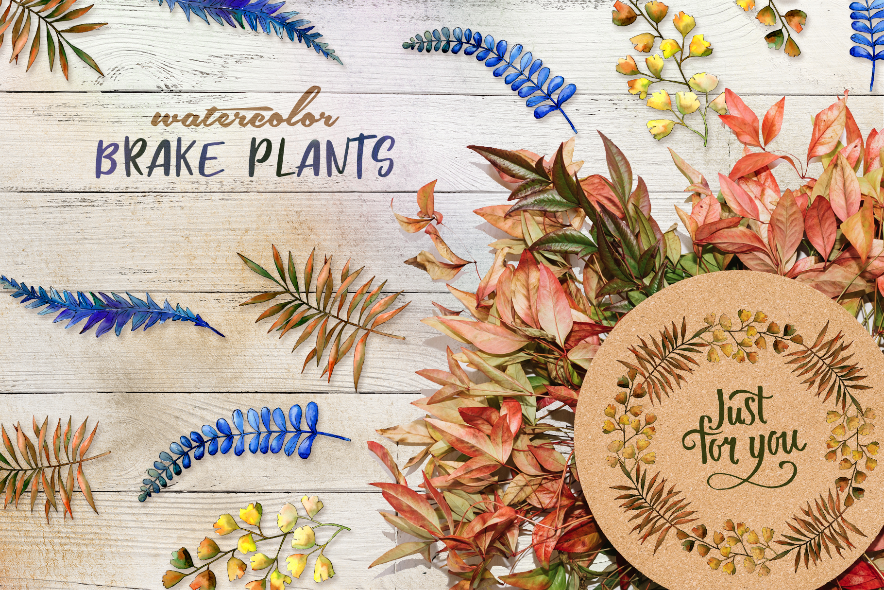 Brake plants PNG watercolor set example image 6