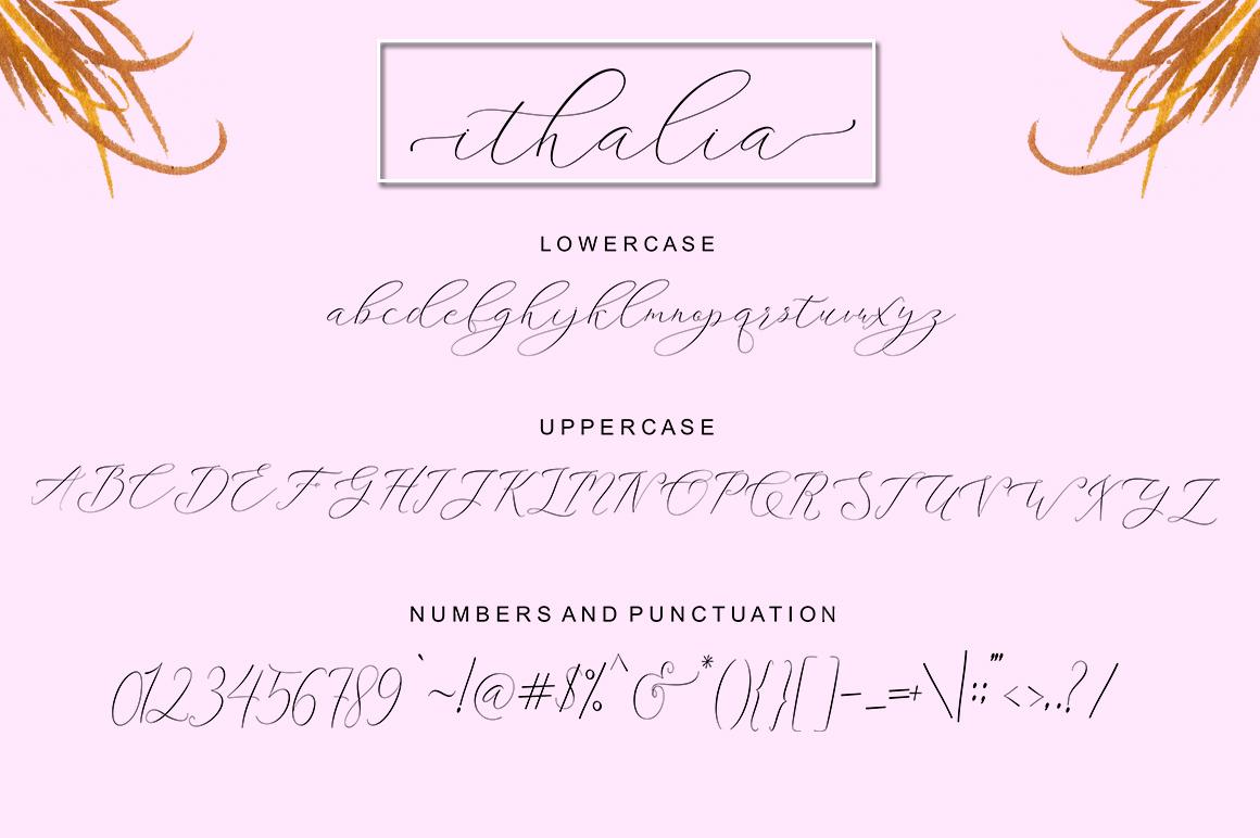 ithalia script example image 7