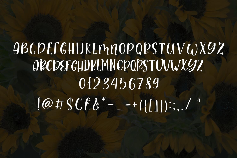 Avantika Font Duo example image 7