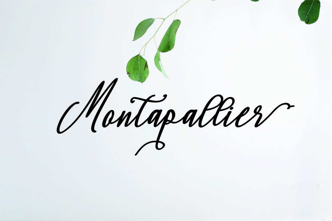 Montapallier script 2 style example image 9