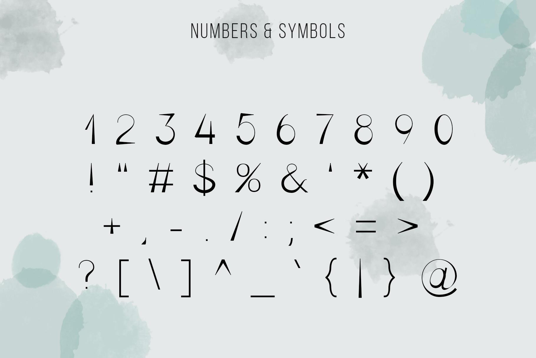 Bella Serif Font Family example image 4