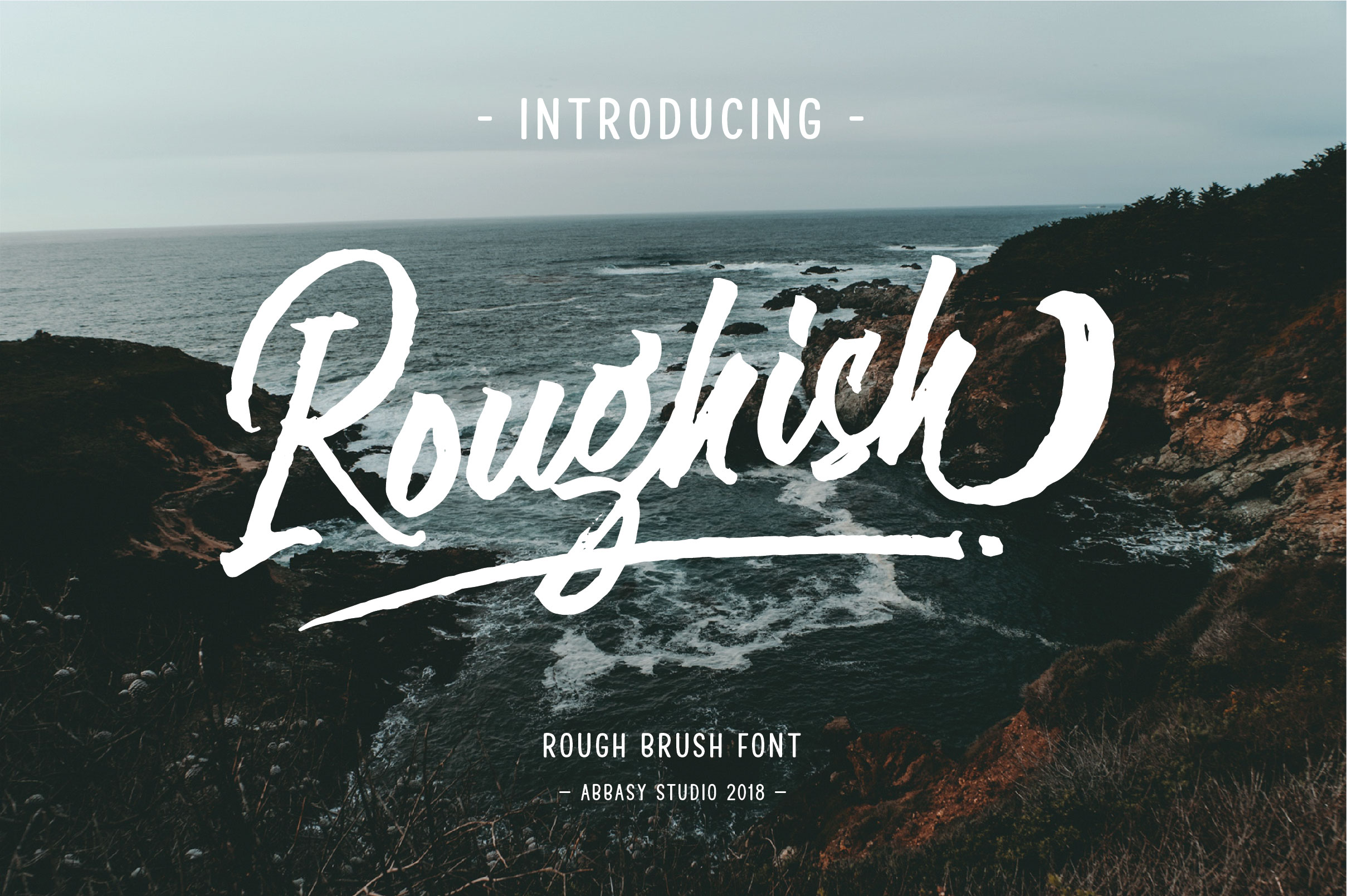 Roughish Brush Font example image 1