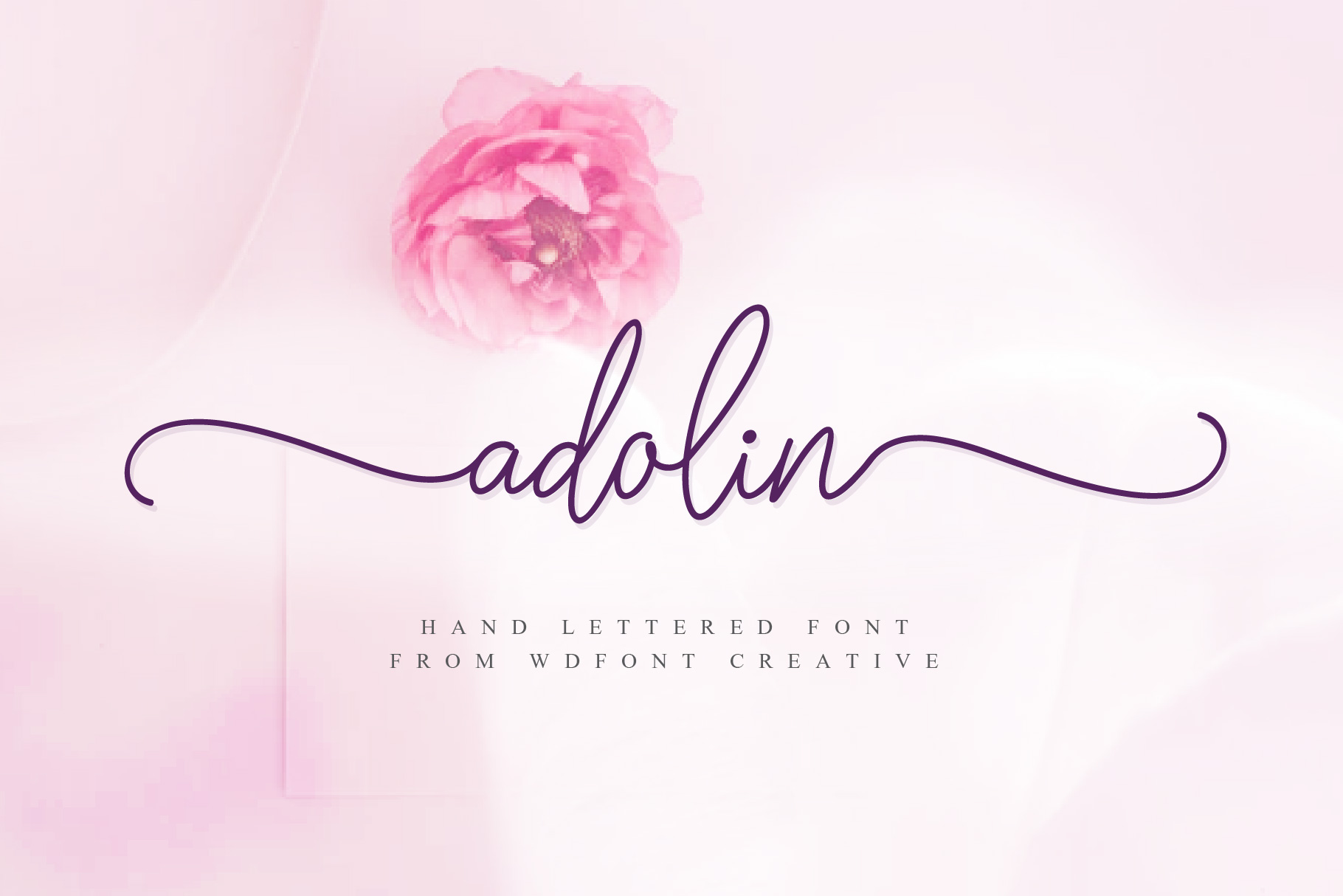 Adolin | Script fonts example image 1