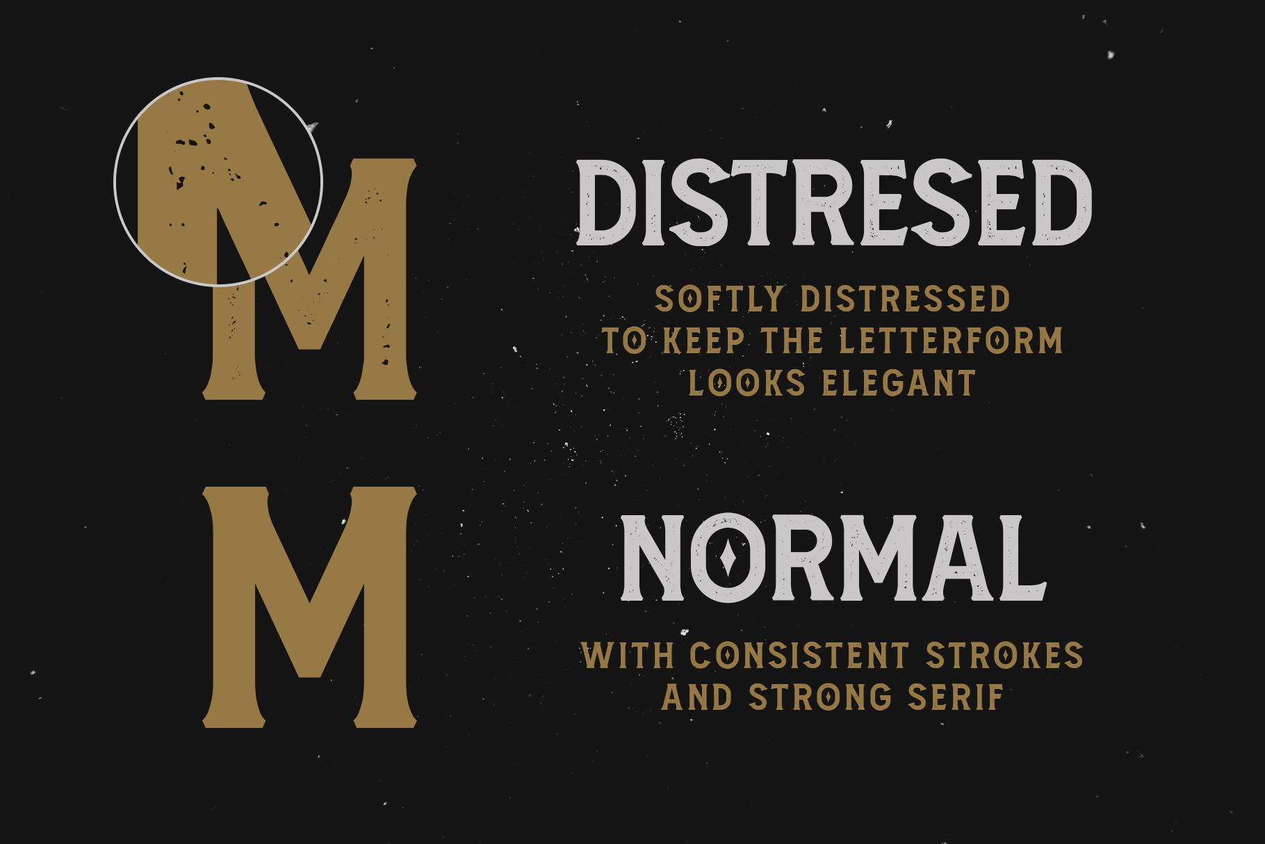 Amnestia Typeface with Extra example image 5