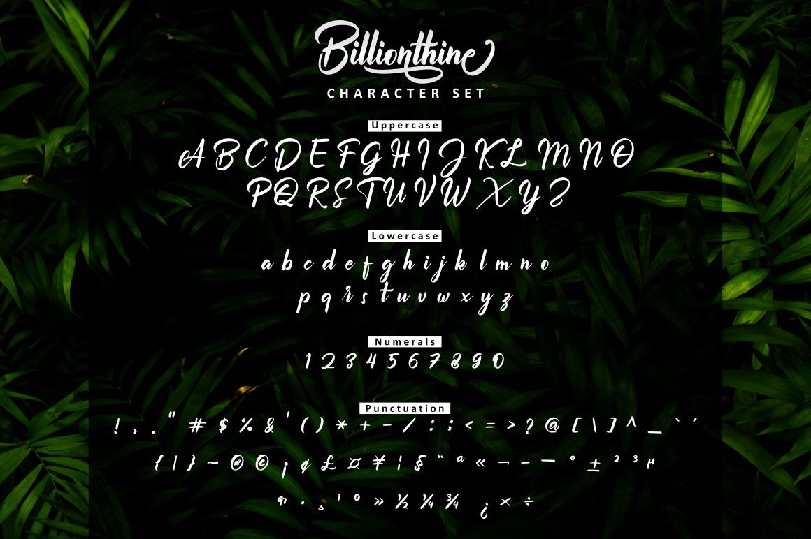 Billionthine Calligraphy Script example image 3