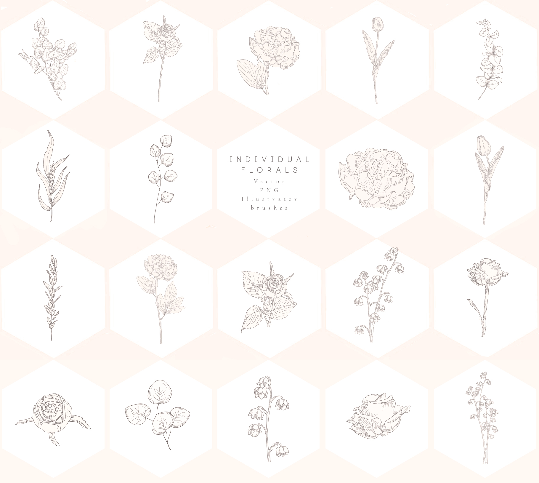Floral Graphics, Logos, Patterns example image 11
