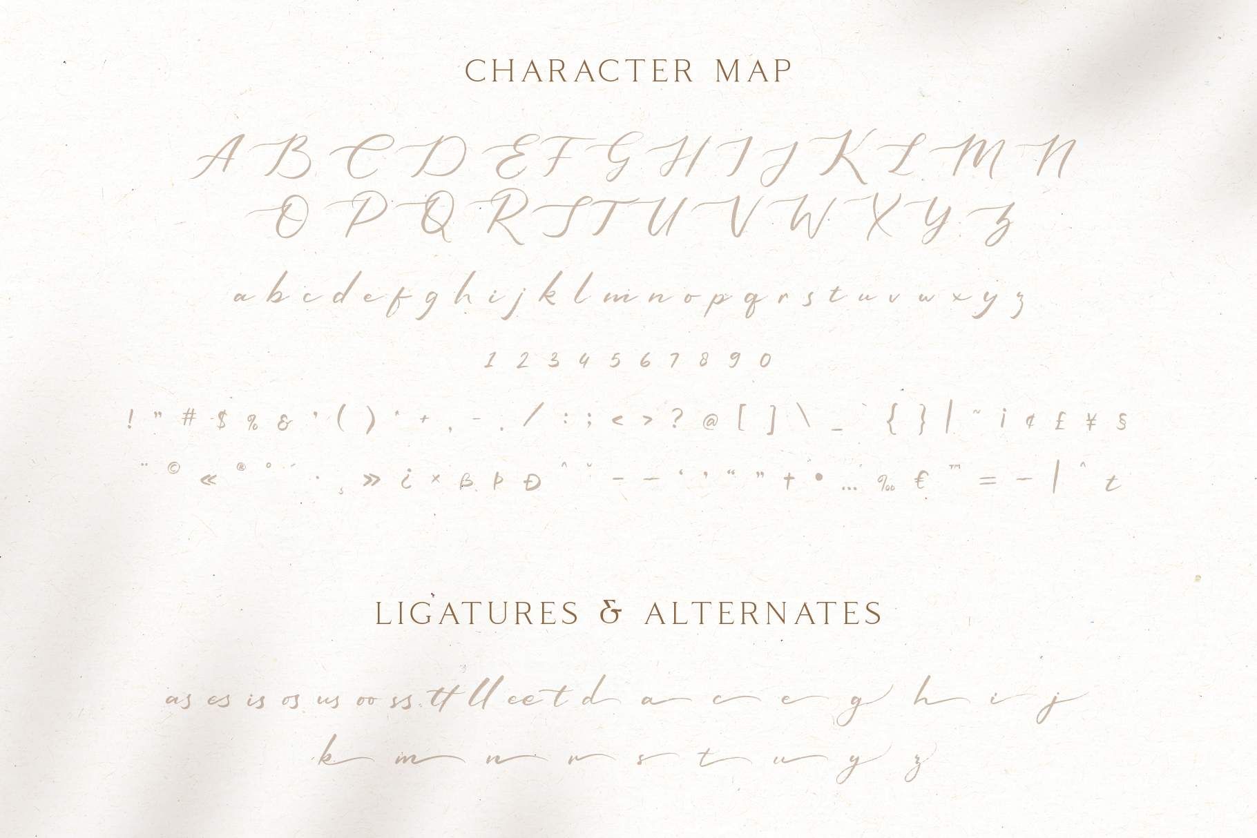 Sophiscated - A Lovely Script Font example image 7