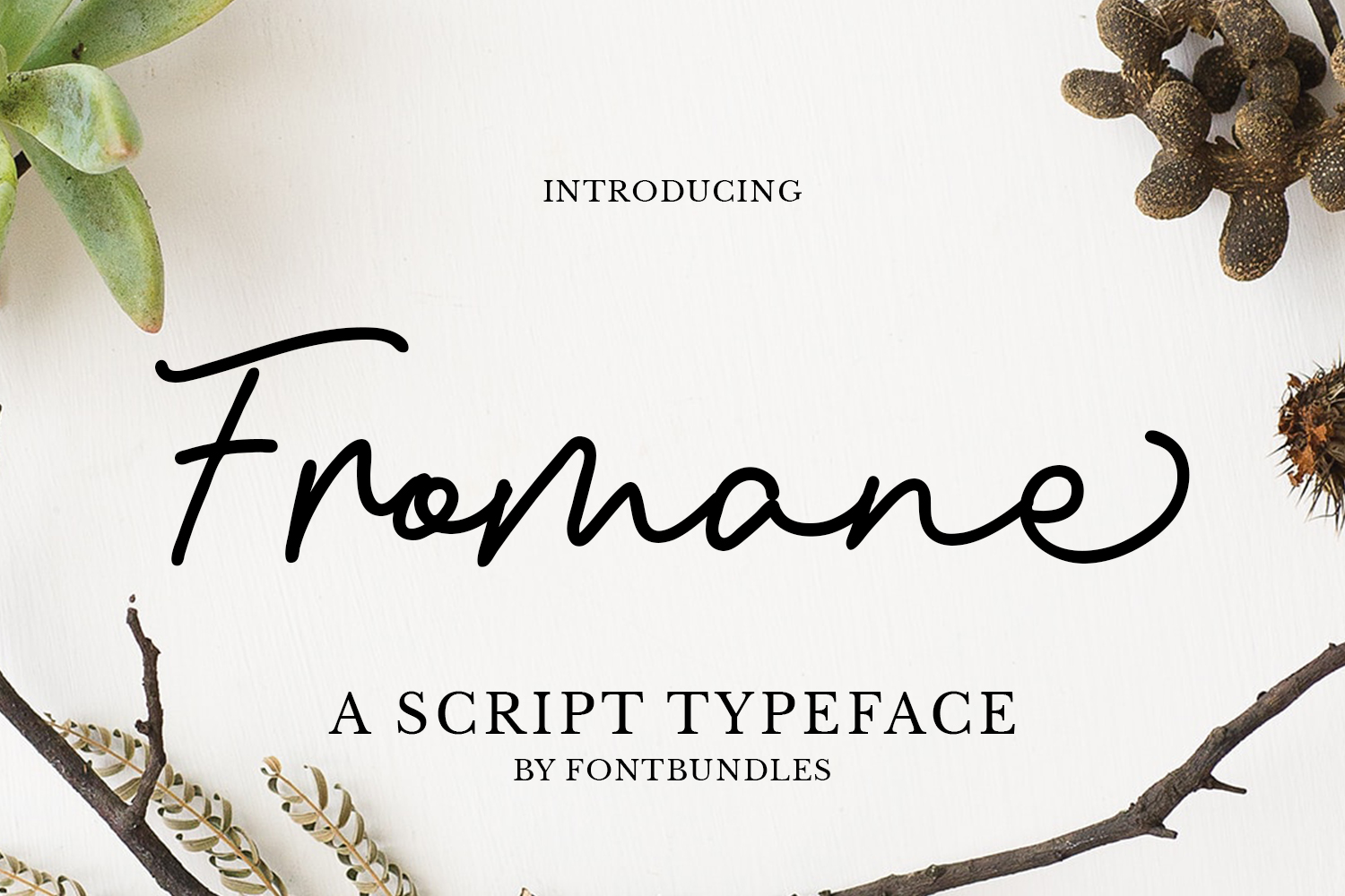 Fromane example image 1