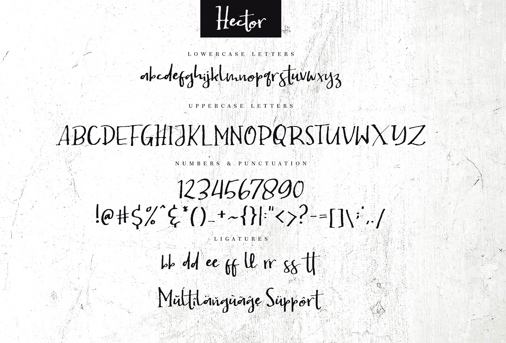 Hector example image 8