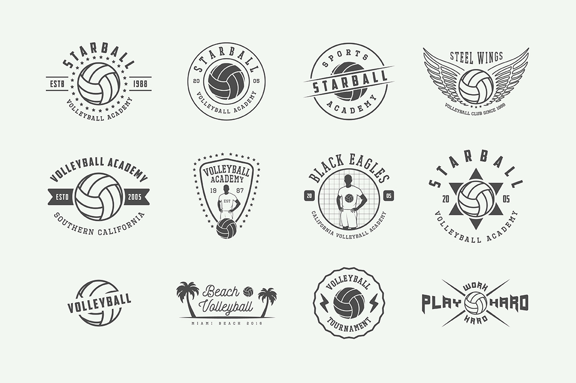 Set of 24 vintage volleyball emblems example image 3