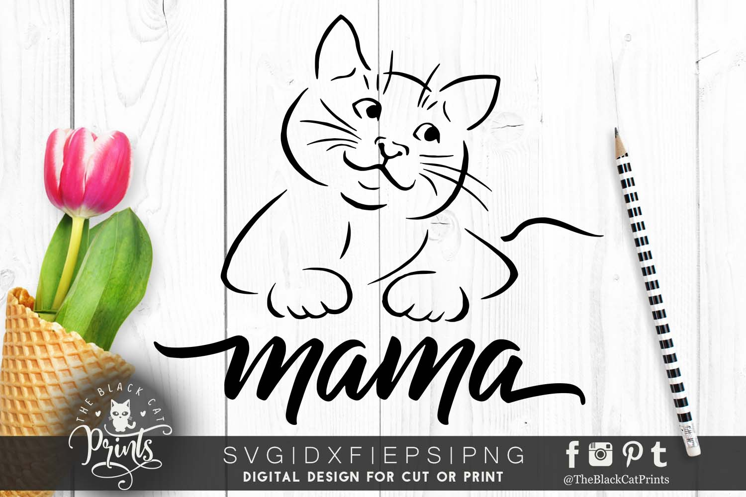 47+ Blessed Momma Of Cats Svg Dxf Eps Png SVG