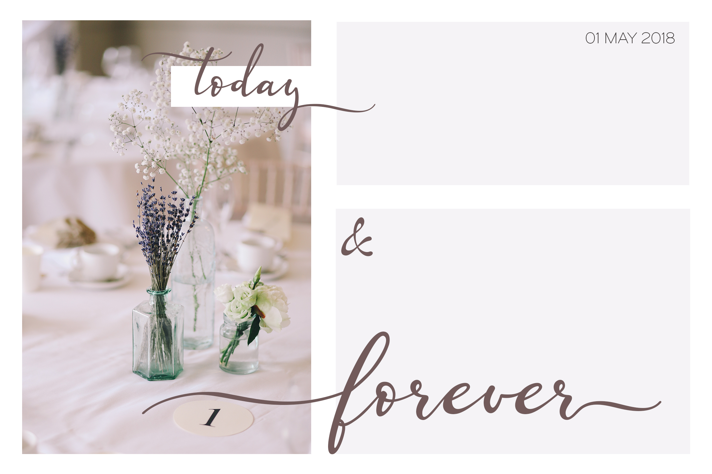 Lazy Daisy - calligraphy font with swashes example image 3