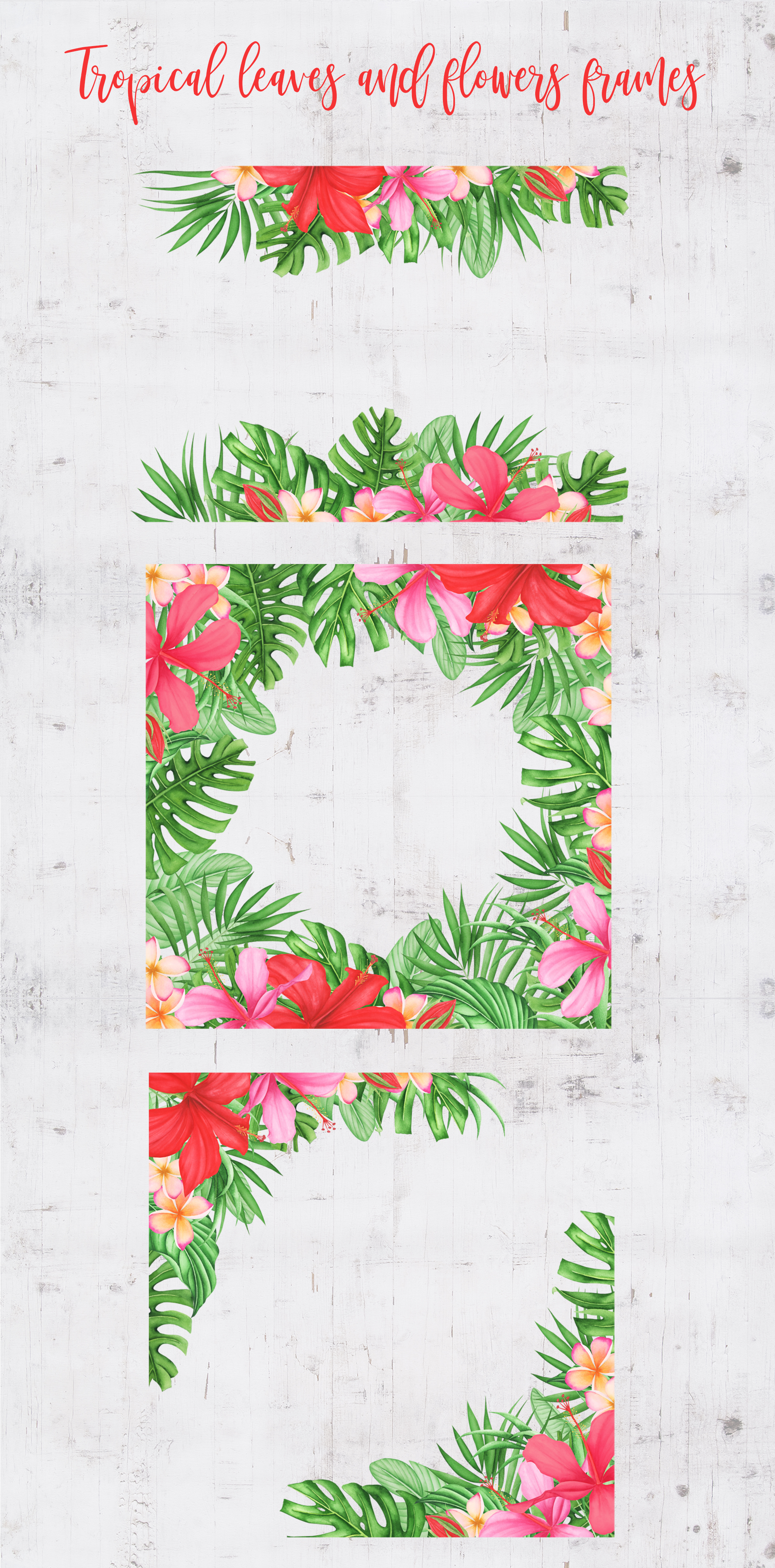 Tropical leaves and flowers clipart example image 6