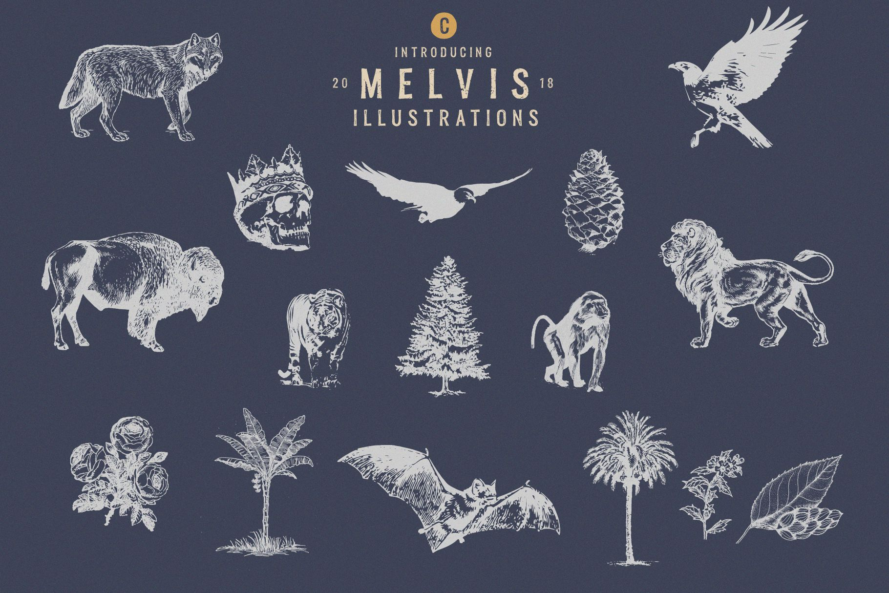 Melvis - Vintage Font Family Extras example image 5