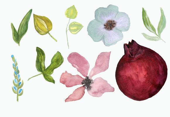 Watercolor Pomegranate Clip Art example image 2