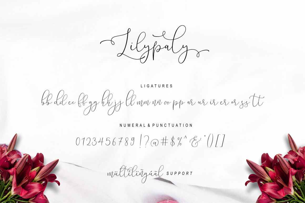 Lilypaly Typeface example image 18