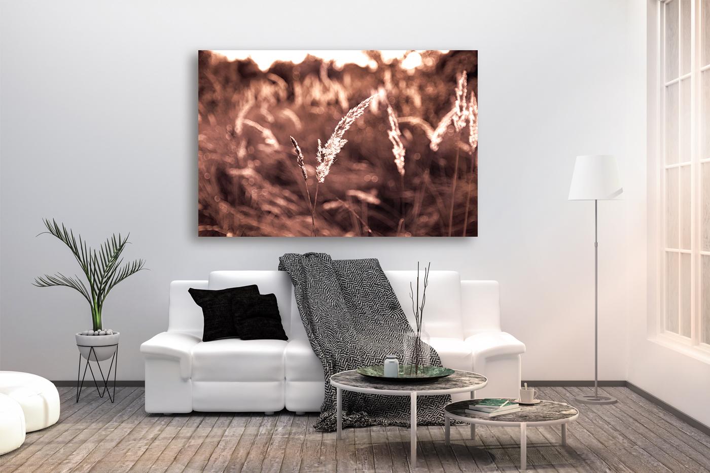 Nature photo, landscape photo, floral photo, flora photo example image 4