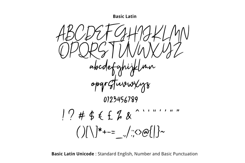 Shakila Script Font example image 2