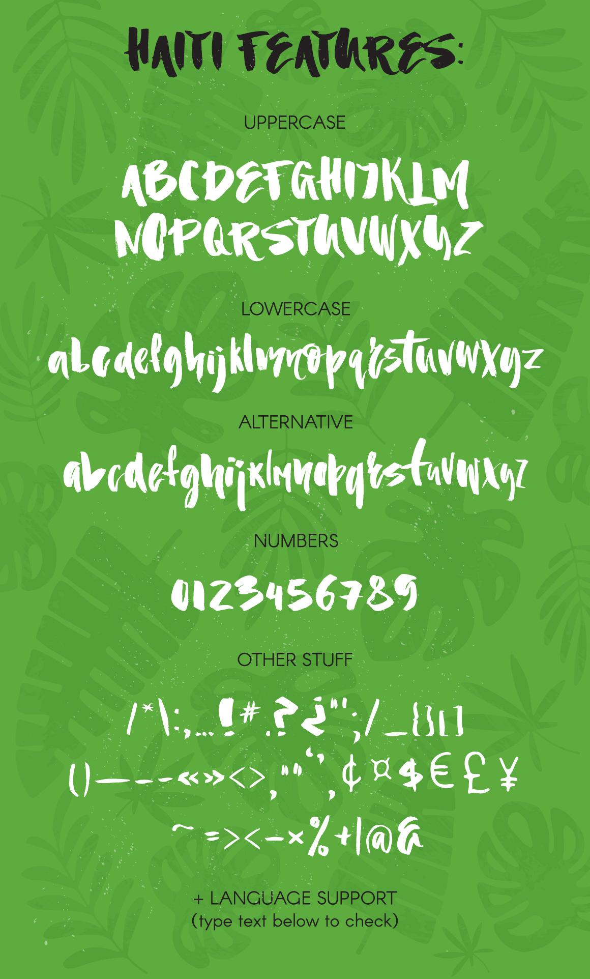Haiti Organic Brush Font example image 6