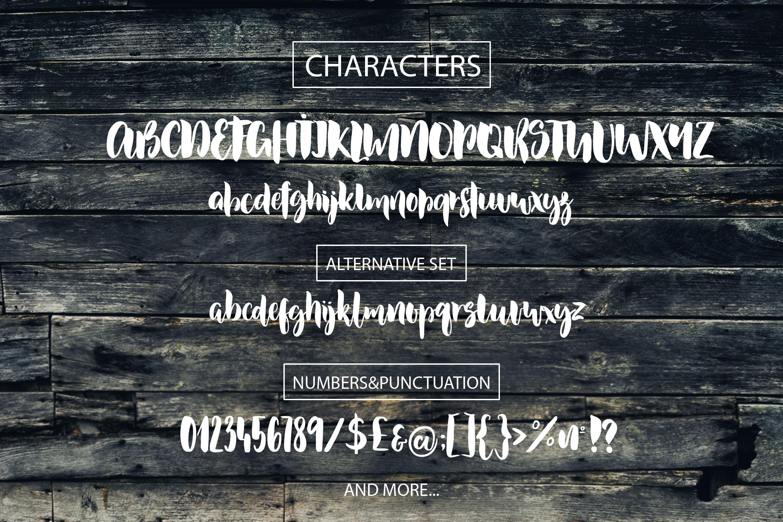 Dusty Lane - Handwritten Brush Font example image 2