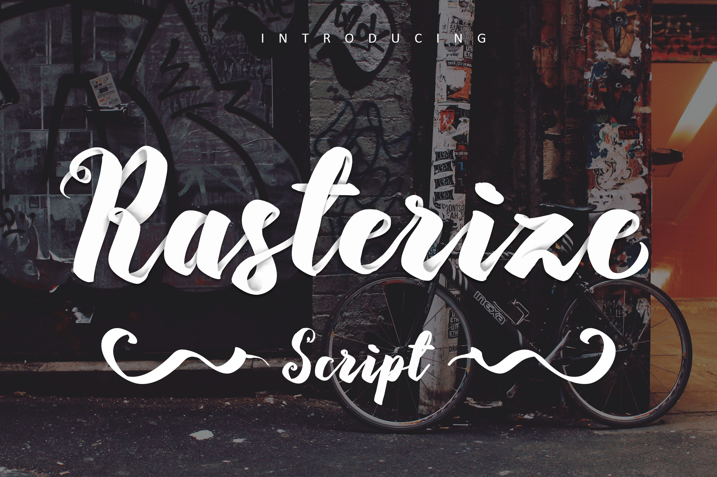 Rasterize Script Bold example image 1