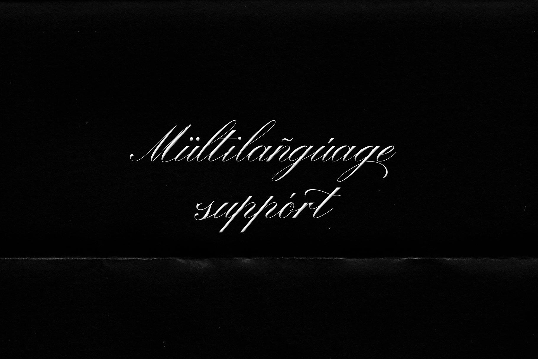 Winterskol Script font example image 9