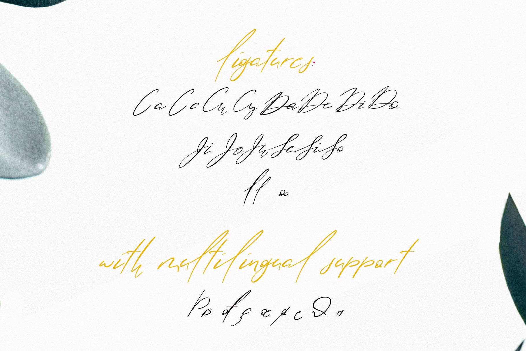 Lolotte Multilingual Signature Font example image 5