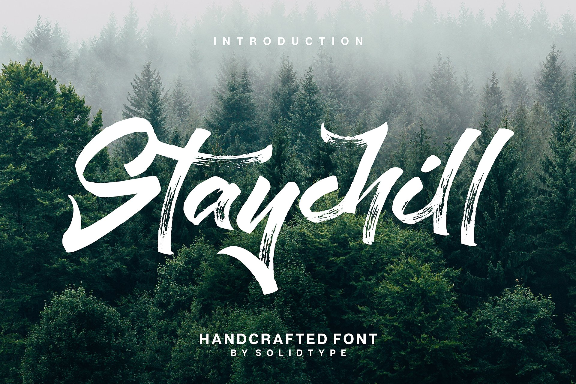 Staychill Brush Font example image 1