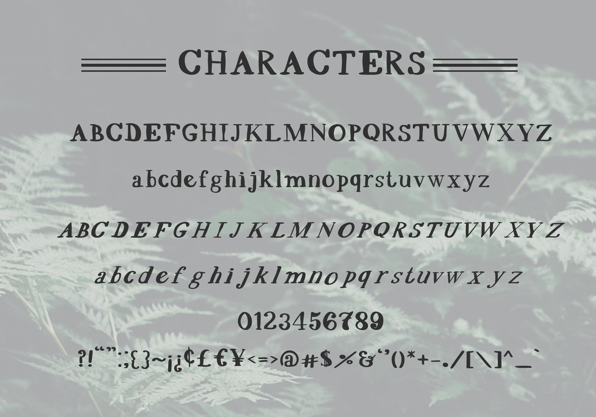Scrawny Eve - Hand Lettered Serif Typeface example image 2